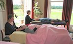 Biodynamic Craniosacral Therapy Practitioner Training